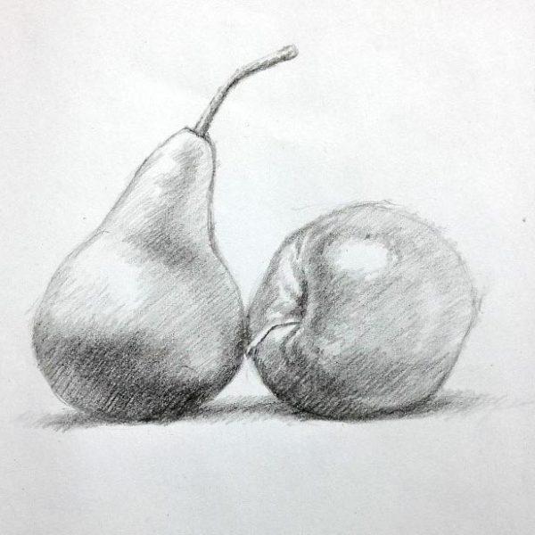 Art-Essentials-Developing-Basic-Drawing-Skills-Art-Course